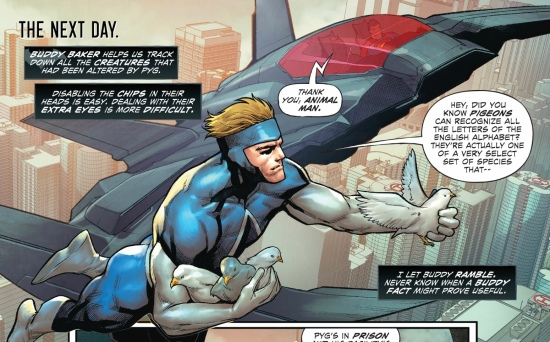 animal-man-batman-superman-future-state-2-2021